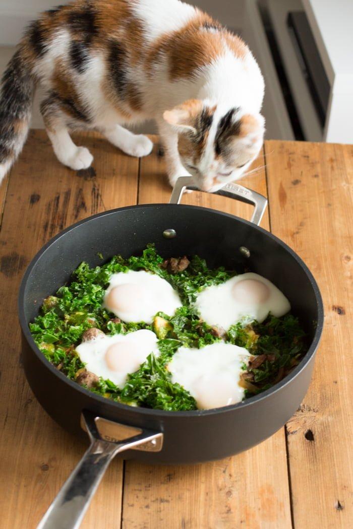 Dagelijkse Kost - Eieren in een nest-2