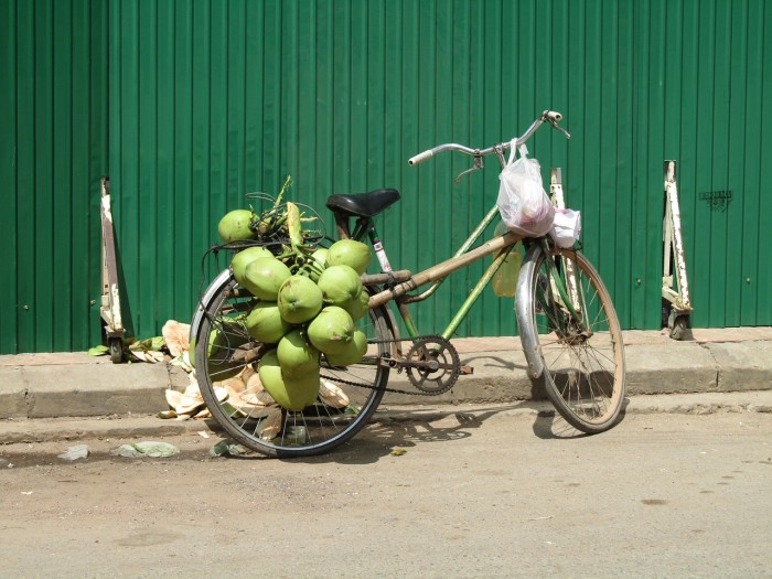 coconut-695221_1280