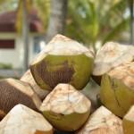 Verse Kokosnoten