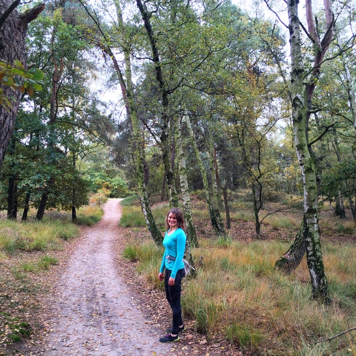 Heerlijk wandelen op de Kalmthoutse Heide