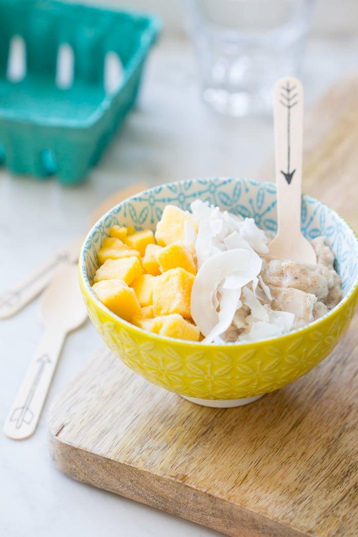 AIP Paleo Porridge - notenvrij, ei-vrij